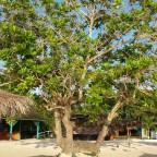 Jamaica – #AtoZChallenge